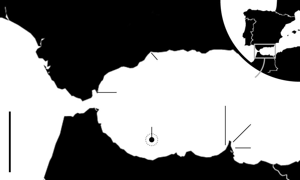 carte de voyage